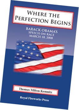 Cover of Where the Perfection Begins